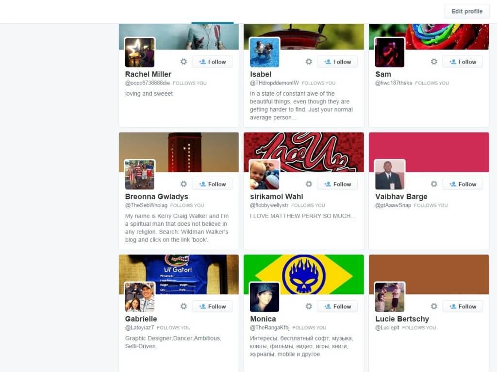 Twitterwind.com twitter followers examples
