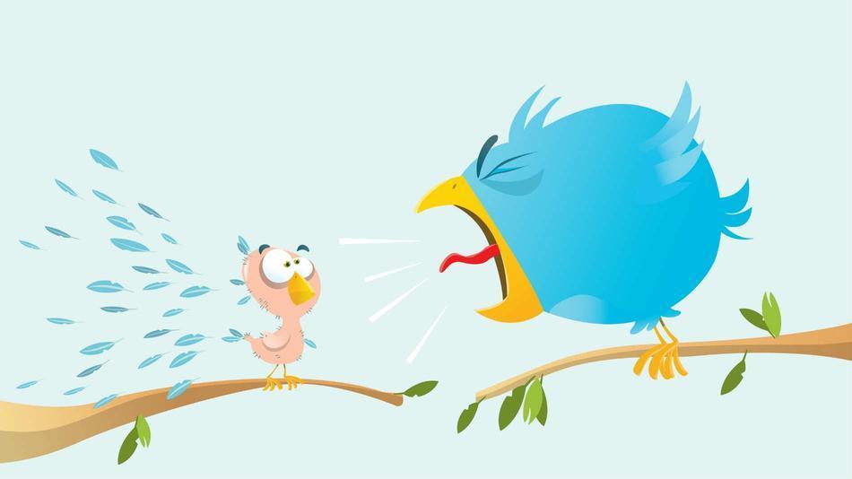 Spamming Twitter Bird