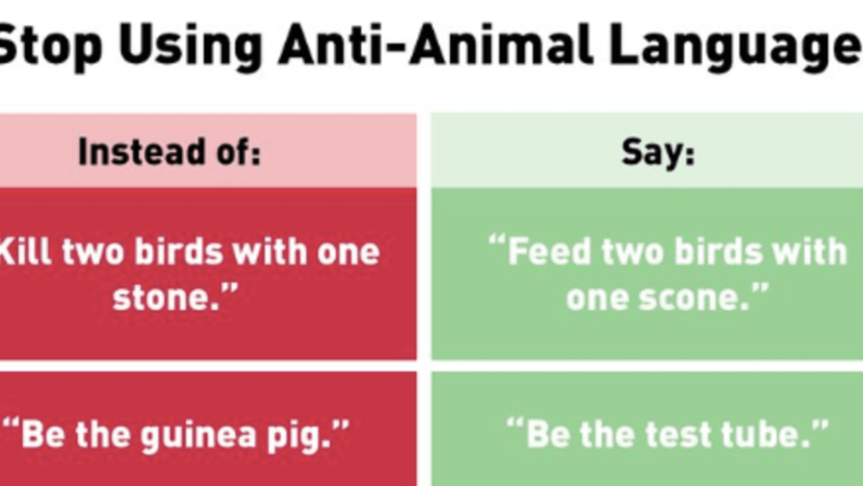 PETA Gets Roasted on Twitter After Tweets on 'Anti-Animal Language'